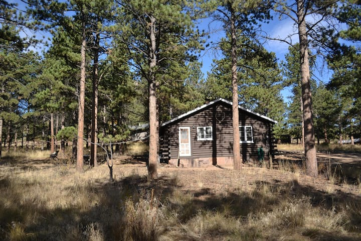 Knotty Pine Cabin - Great Cozy Cabin with Views