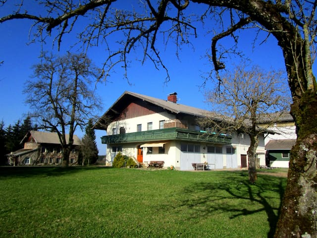 Holiday on a Farm - Obertrum - Appartement
