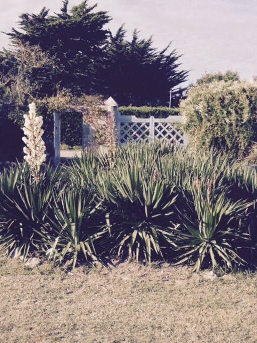 Le jardin clôt, qui donne sur le chemin