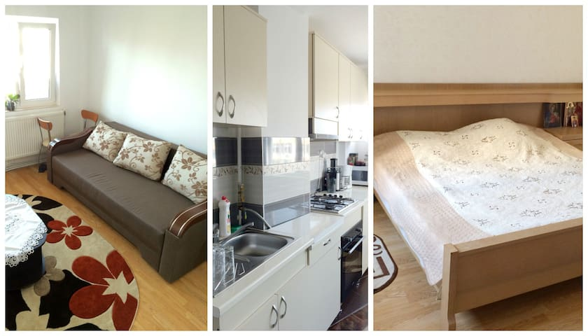 Apartament Sophia - Hațeg - Apartment