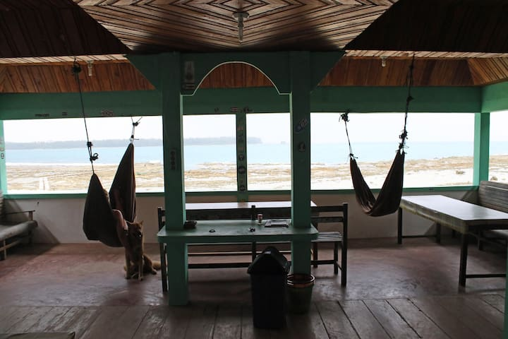 Marlynto Surf Camp (2 Single Beds with Fan)