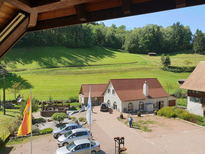 Luchs Hostel im Hirschen - with a Balcony for two