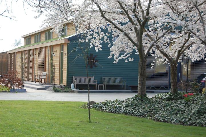 Lelymare Logies (de Schelp) - Lelystad - Apartemen