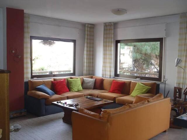 Spacious and sunny apartment in Kalamaria