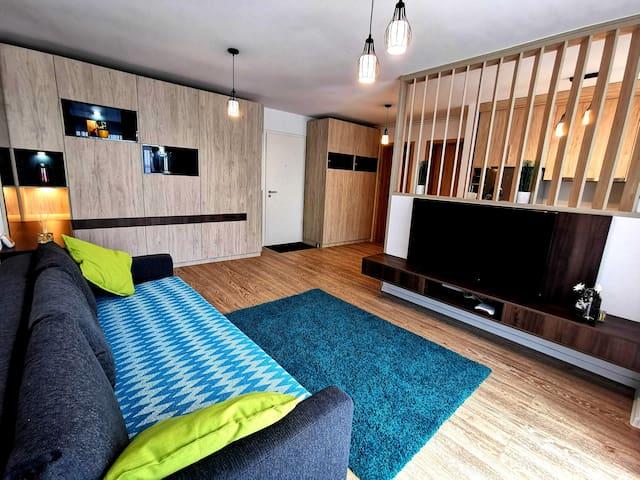 The living room and the sofa bed.  Livingul și canapeaua extensibila.