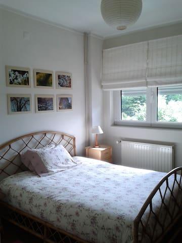 Bedroom2 (for kids or friends)