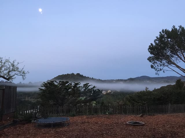 Sunrise view from your bed or the back garden; inspiring morning mist due to the microclimate; organic edible garden in working progress