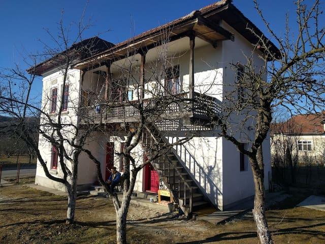 Private room in traditional house - Vâlsănești - Σπίτι