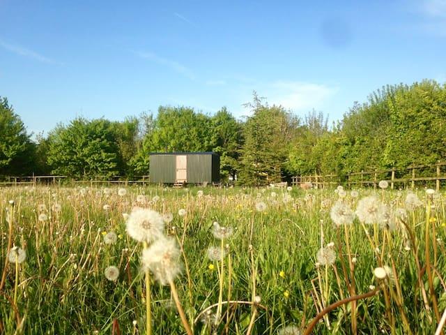 Shepherds Hut in a Wild Cotswold Meadow