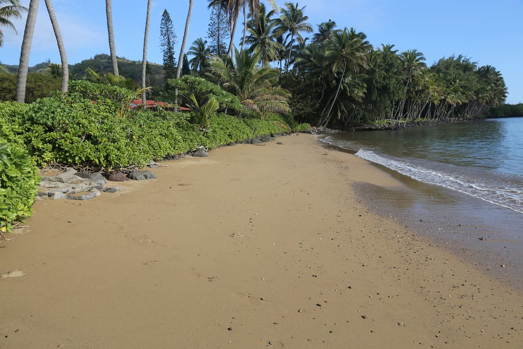 Beach Out Front of Our Property