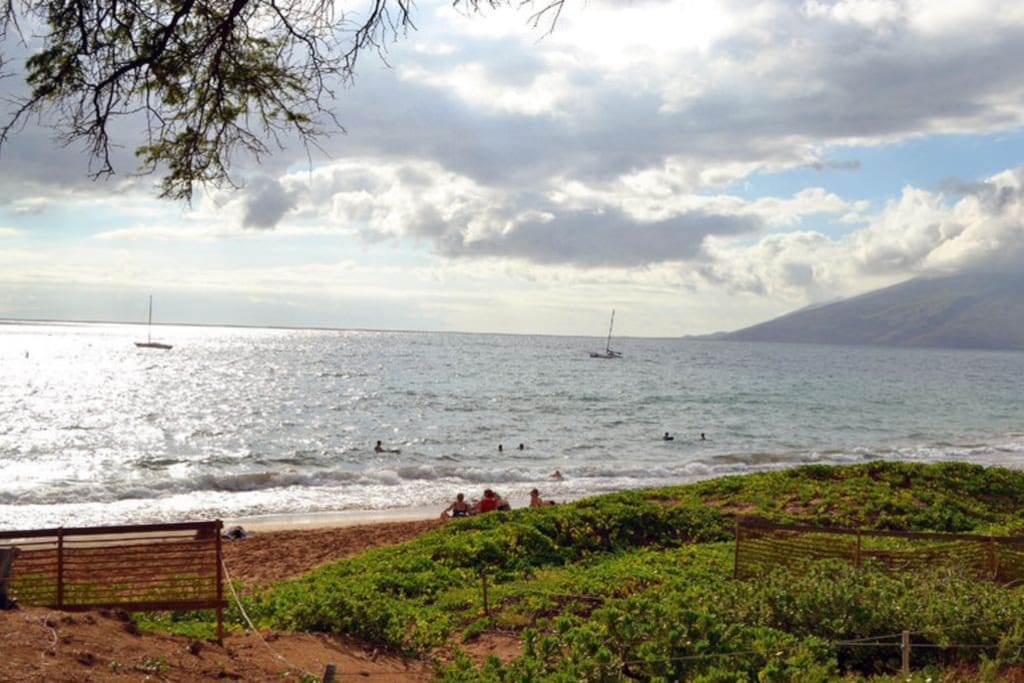 across from Kamaole Beach enjoy a bbq on the lawn and watch a sunset