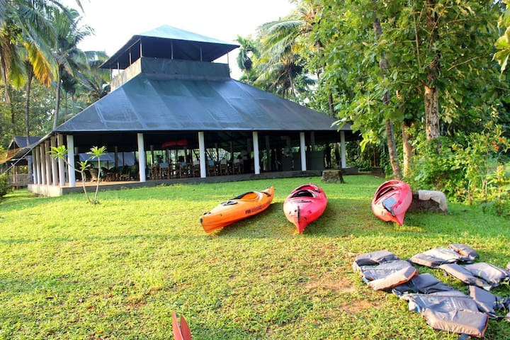Bed and Breakfast on the River Periyar