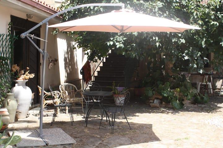 B&B Il Cachi & La Palma con favoloso cortile