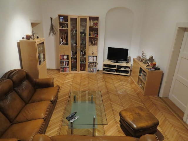 Entire Apartment in the city center - Wiener Neustadt - Daire