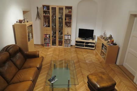 Entire Apartment in the city center - Wiener Neustadt - 公寓