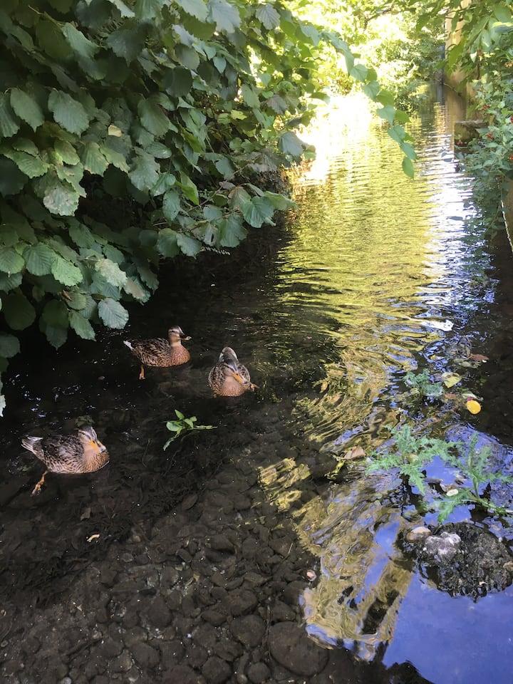 Au calme tout près d'un canal...