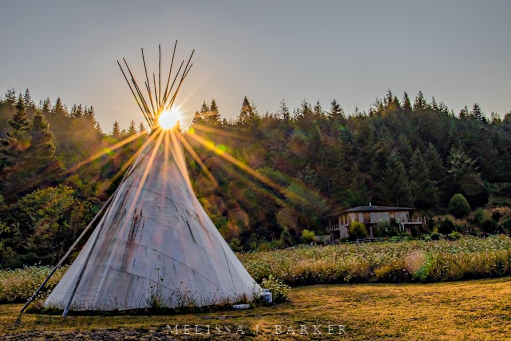 The teepee is set up in the summer and is also on Airbnb