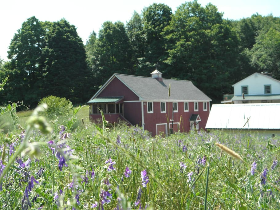 Apartments For Rent In Hinesburg Vt