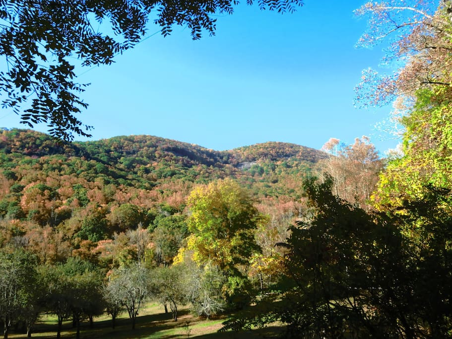 The house is surrounded by mountains and hiking trails in the Upper Hickory Nut Gorge.