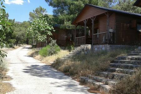 Cabaña de madera C alquiler  dias - Cenicientos - Cabin - 1