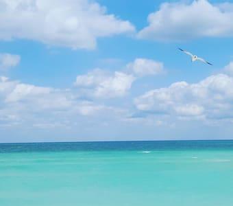 Good Vibes on Miami Beach! - Condominium