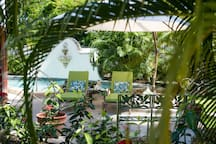Enjoy our lush tropical gardens
