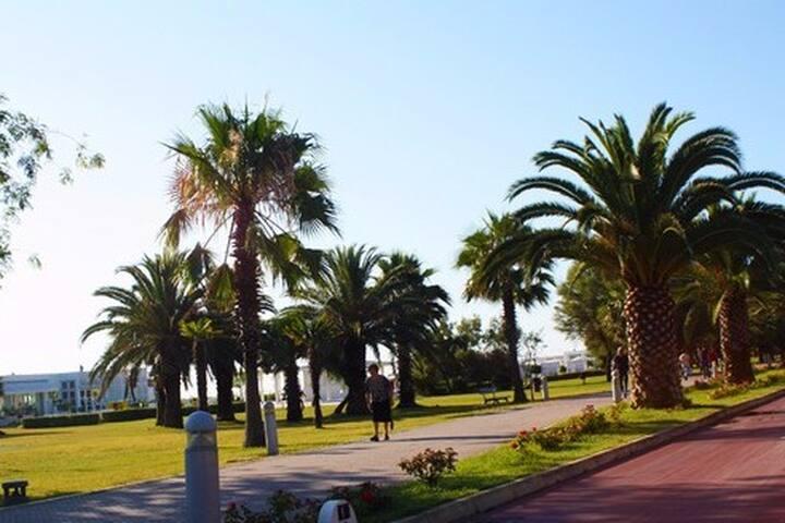A Porto Sant'Elpidio per visitare tutte le Marche