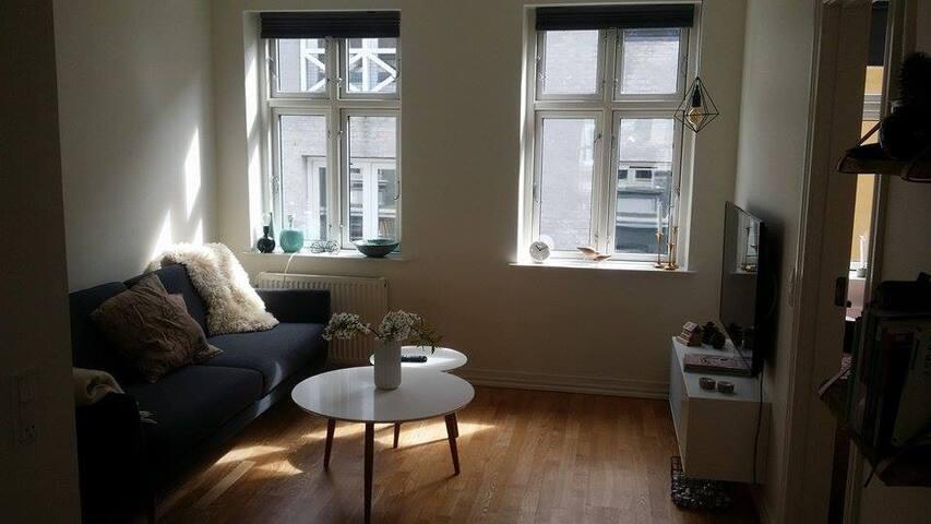 Nyrenoveret lejlighed i Aalborg midtby - Aalborg