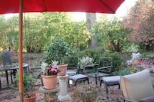Late Summer / Early Fall Patio