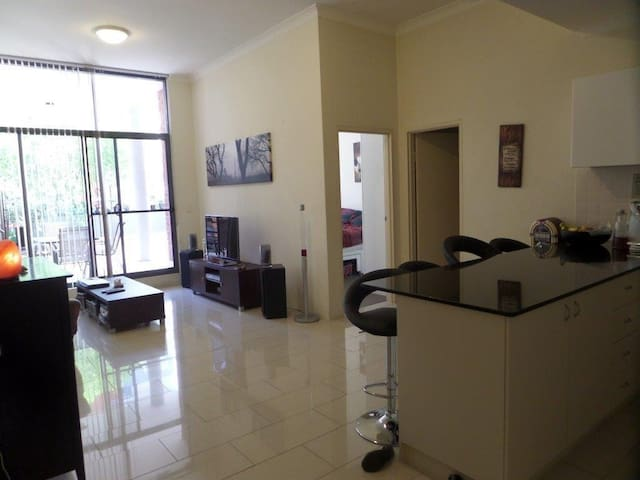 Large 1 bedder with huge terrace