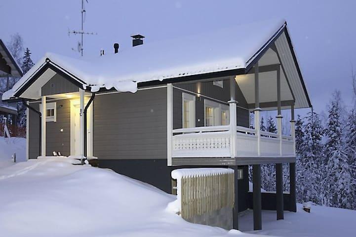 Villa Sidori 4 - Jämsä - Huis
