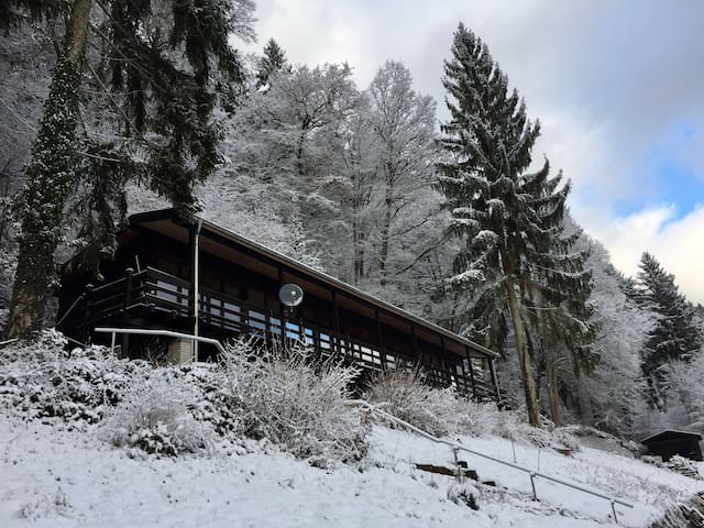 Gästehaus im Schwarzwald auf traumhaftem Anwesen