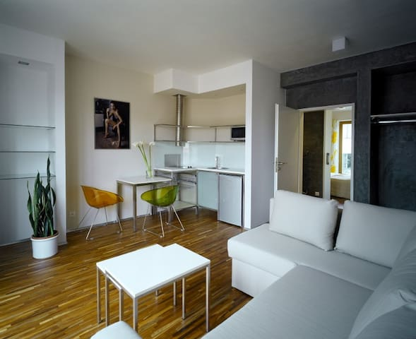 Our fully furnished 1+1 apartment.. - Praga - Bed & Breakfast
