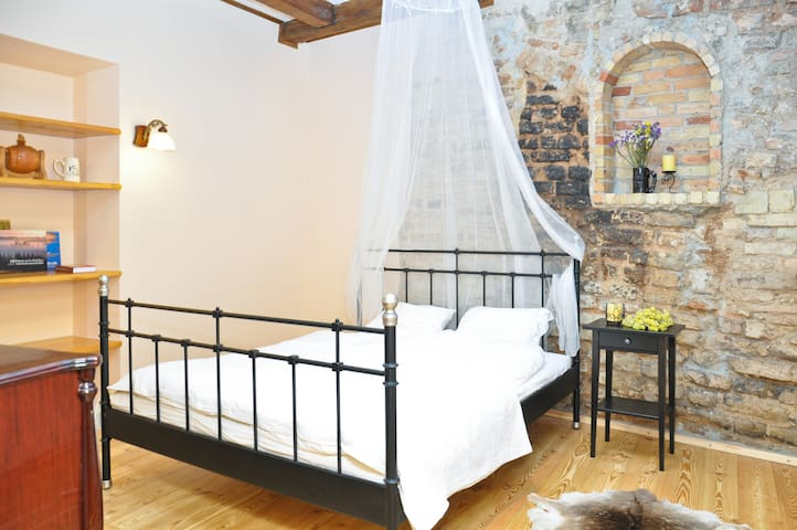 Romantic Home Oldtown - Vilna - Apartamento