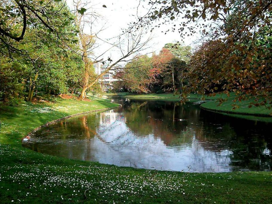 The beautiful city park is 5 minutes walk from the flat.