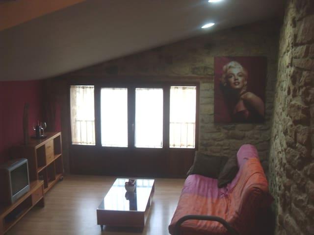 SOS DEL REY CATOLICO,VILLA MEDIEVAL - Sos del Rey Católico - 公寓