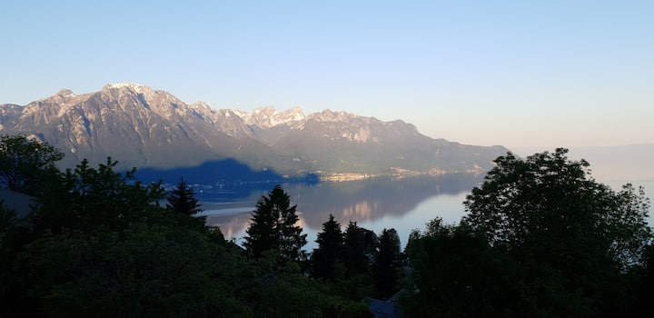 Large Room: Stunning Views of Lake Geneva