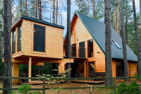 Domek na drzewie, Gibasówka
