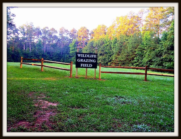 Wildlife Grazing Field and Hiking Trail