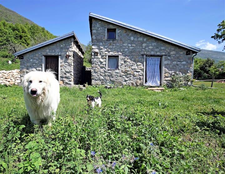 Casa rurale del pane e asini True Cilento Vero