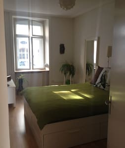 Apartment next to Fair! - Basel - Huoneisto