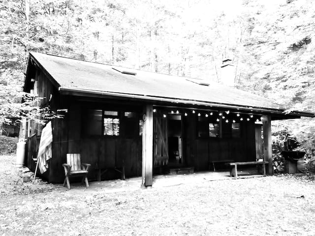 Catskill's Le Petite Cabine - Narrowsburg - Cabaña