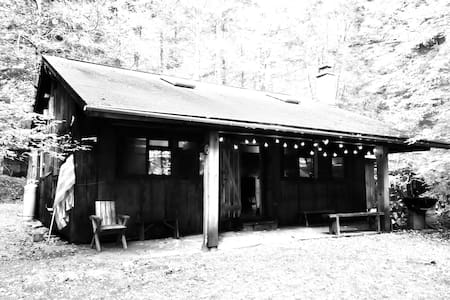 Catskill's Le Petite Cabine - Narrowsburg - Chalet