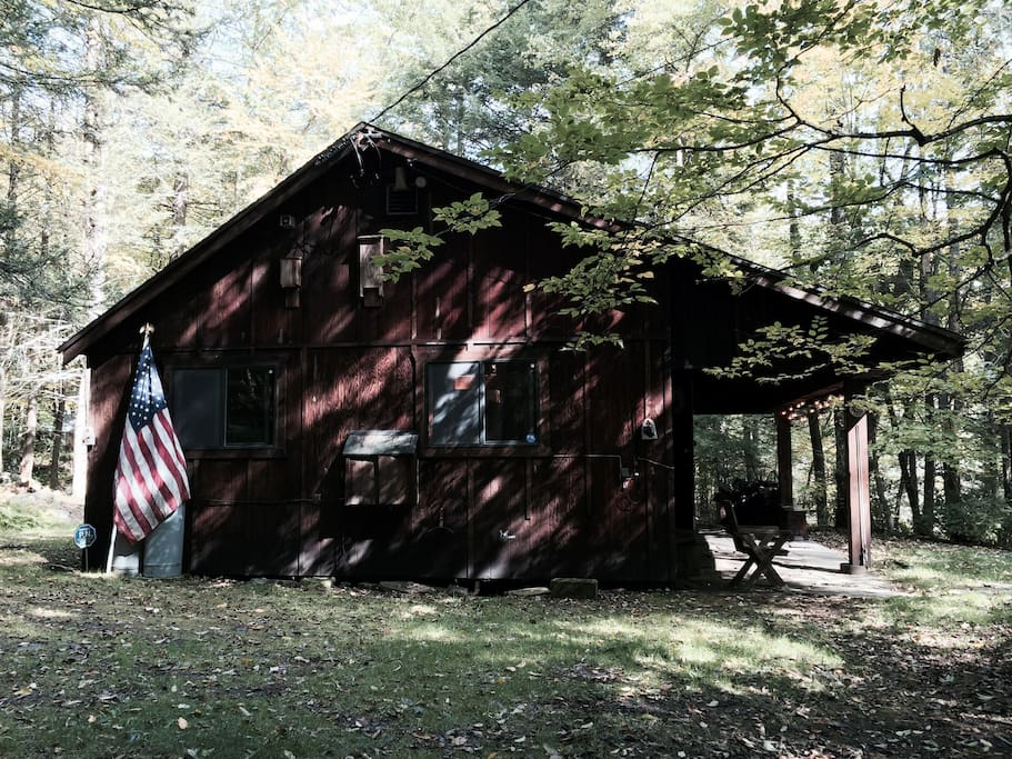 An authentic rustic cabin experience in the Catskills. Seclusion but not far from nearby Delawar River quaint Hamlet of Narrowsburg, NY.