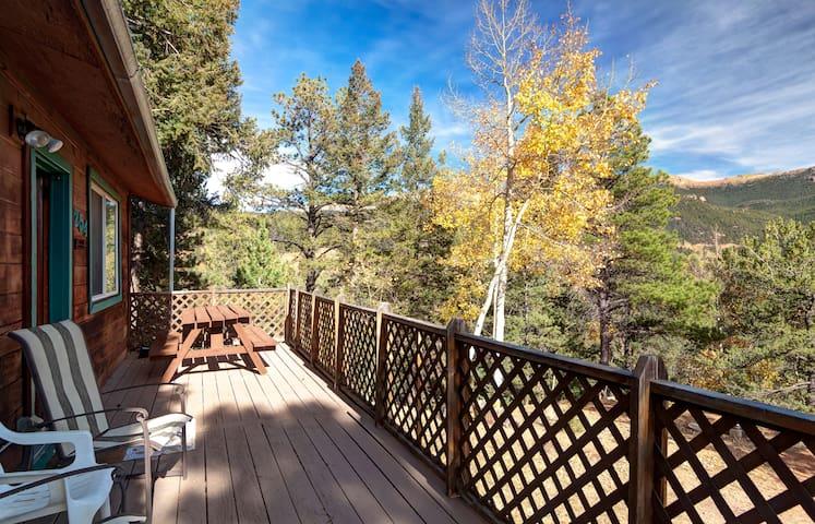 Evergreen Cabin in Divide Colorado - Divide - Cabin