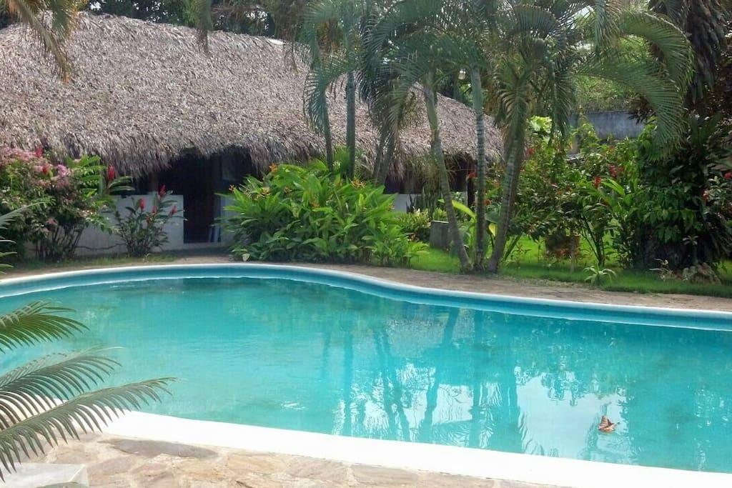 bungalow con piscina las terrenas cabanes louer las