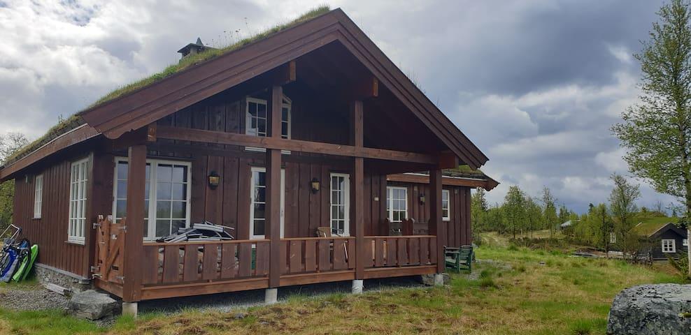 Flott hytte på Torpo - Hallingdal