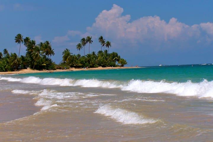 Romantic Beach Front Villa, Palmas - Palmas Del Mar - Casa de camp