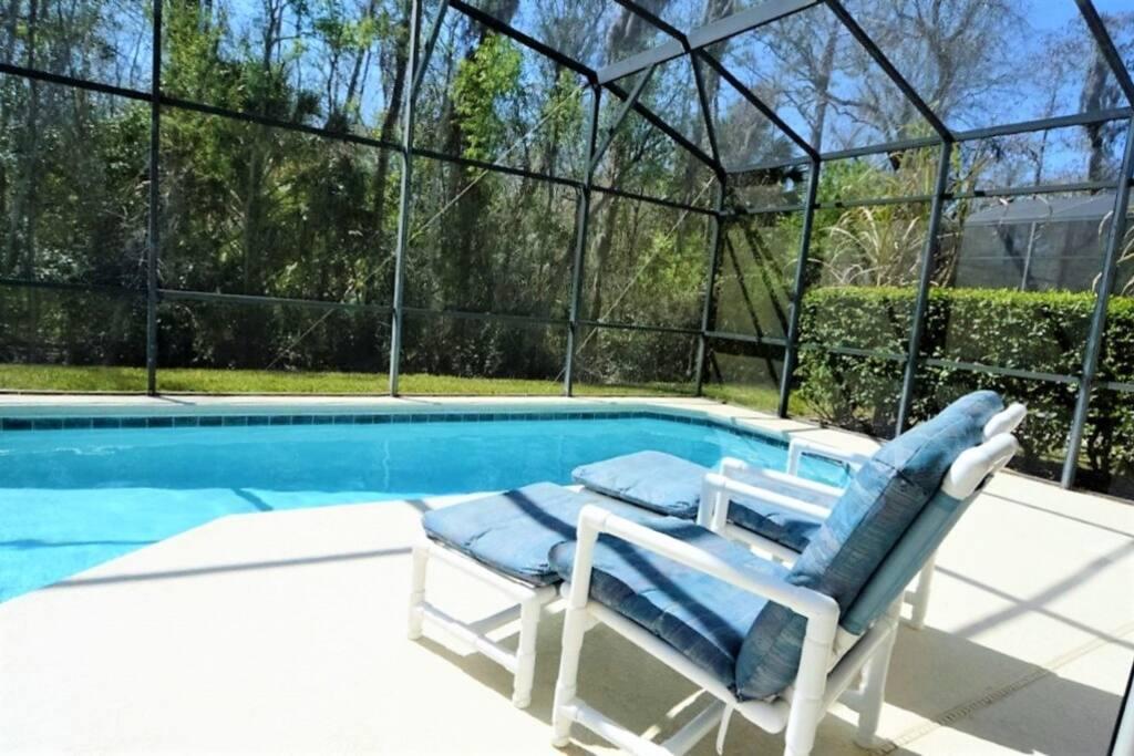 Chair, Furniture, Pool, Water, Resort
