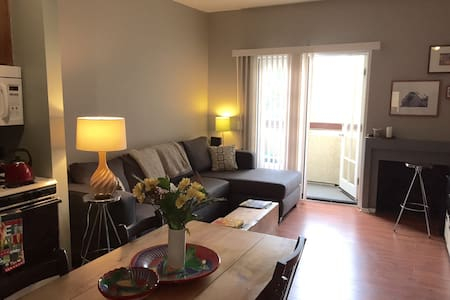 Awesome 1 bedroom in Highland Park - Apartment